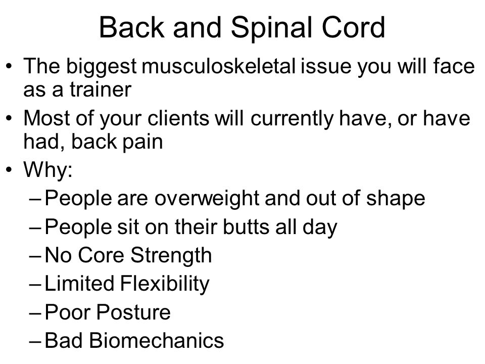 Back and Spinal Cord The biggest musculoskeletal issue you will face as a trainer Most of your clients will currently have, or have had, back pain Why