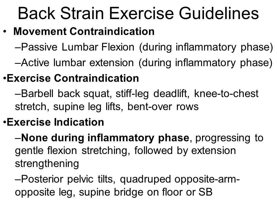 Back Strain Exercise Guidelines Movement Contraindication –Passive Lumbar Flexion (during inflammatory phase) –Active lumbar extension (during inflamm