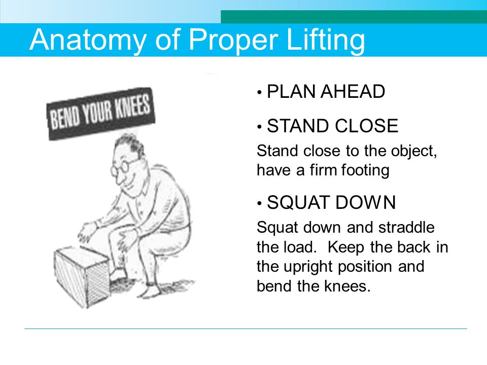 Anatomy of Proper Lifting PLAN AHEAD STAND CLOSE Stand close to the object, have a firm footing SQUAT DOWN Squat down and straddle the load.