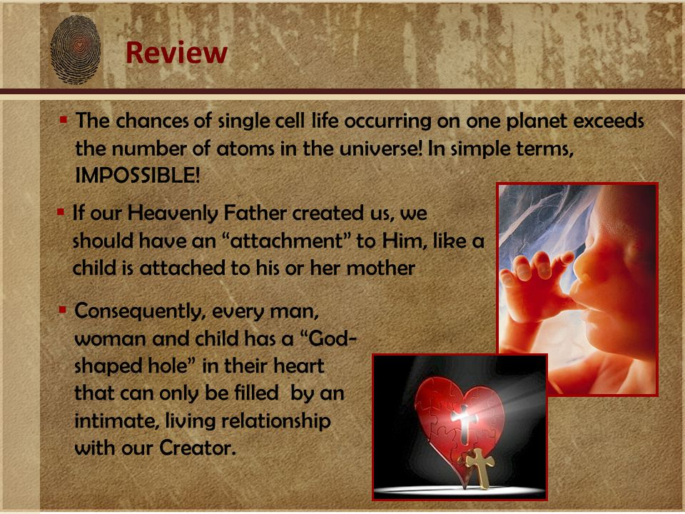 Review  The chances of single cell life occurring on one planet exceeds the number of atoms in the universe.