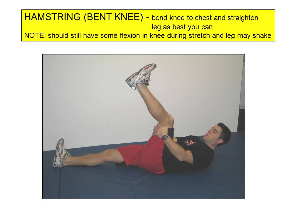 HAMSTRING (BENT KNEE) - bend knee to chest and straighten leg as best you can NOTE: should still have some flexion in knee during stretch and leg may shake