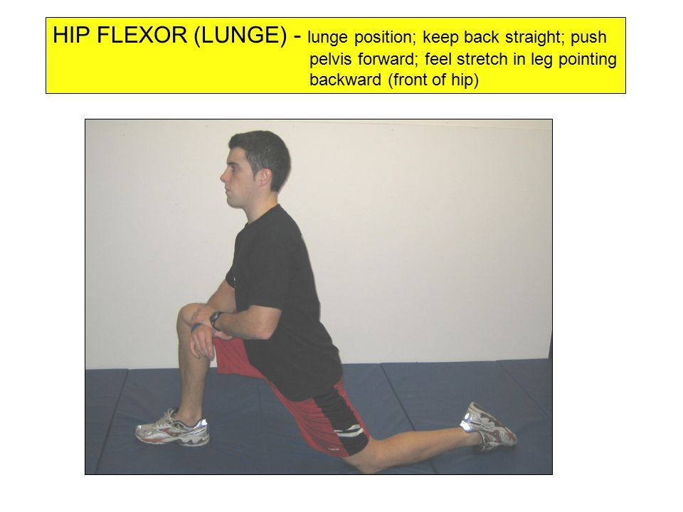 HIP FLEXOR (LUNGE) - lunge position; keep back straight; push pelvis forward; feel stretch in leg pointing backward (front of hip)