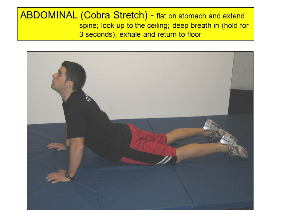 GASTROCS (calf stretch) - be sure to keep heel on floor