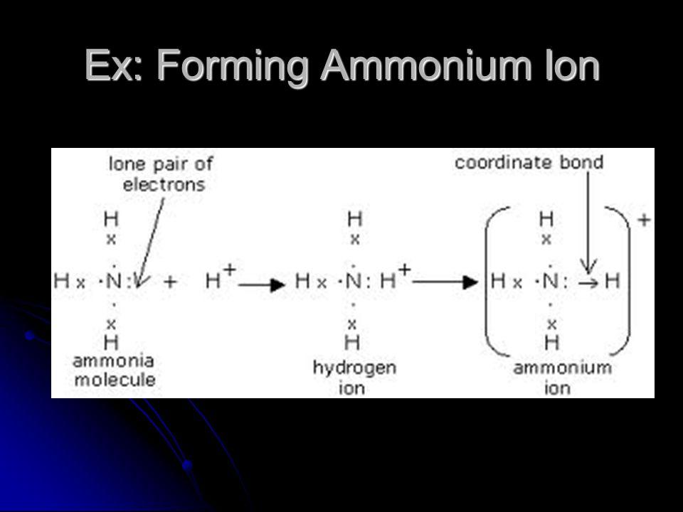 Ex: Forming Ammonium Ion