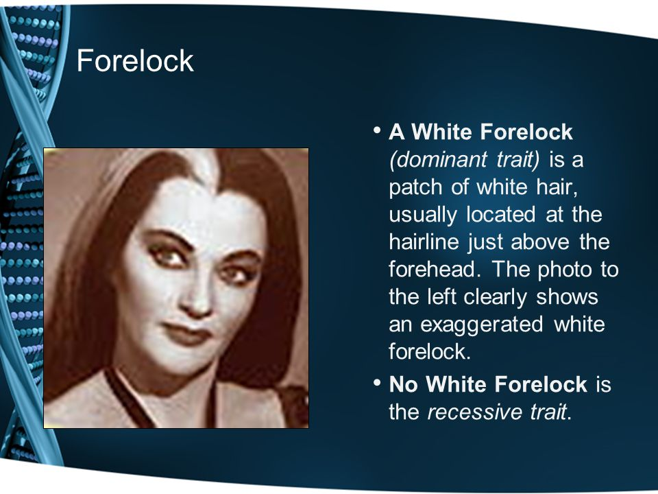 Forelock A White Forelock (dominant trait) is a patch of white hair, usually located at the hairline just above the forehead. The photo to the left cl