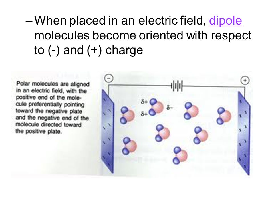 –When placed in an electric field, dipole molecules become oriented with respect to (-) and (+) charge