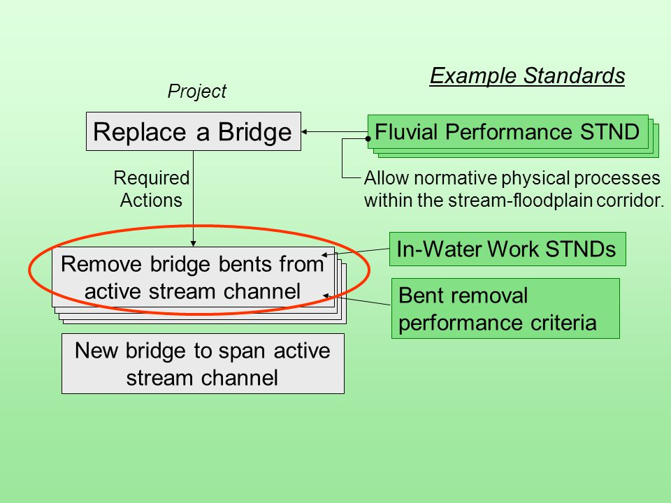Replace a Bridge Project Remove bridge bents from active stream channel New bridge to span active stream channel In-Water Work STNDs Bent removal performance criteria Example Standards Allow normative physical processes within the stream-floodplain corridor.