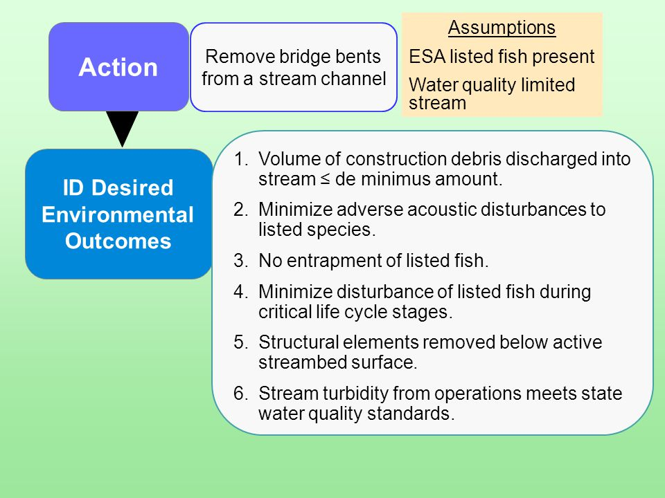 Remove bridge bents from a stream channel Action ID Desired Environmental Outcomes 1.Volume of construction debris discharged into stream ≤ de minimus
