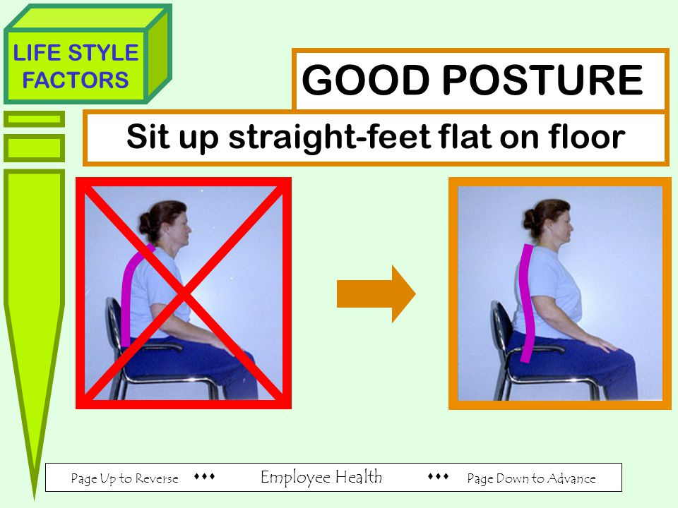 Page Up to Reverse  Employee Health  Page Down to Advance LIFE STYLE FACTORS GOOD POSTURE Sit up straight-feet flat on floor