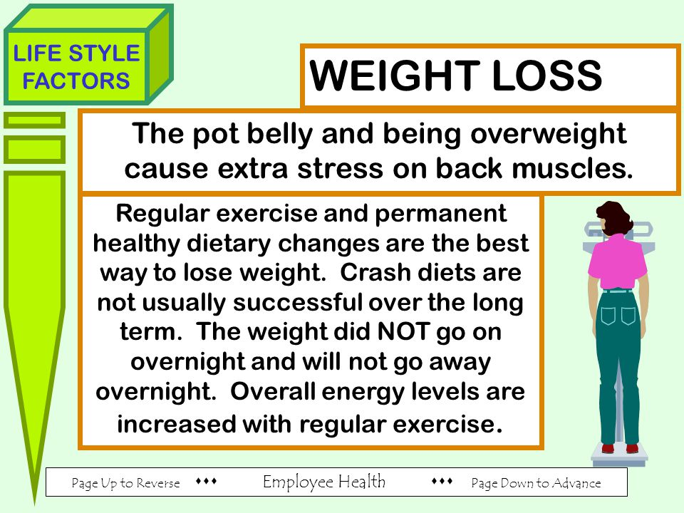 Page Up to Reverse  Employee Health  Page Down to Advance LIFE STYLE FACTORS WEIGHT LOSS The pot belly and being overweight cause extra stress on back muscles.
