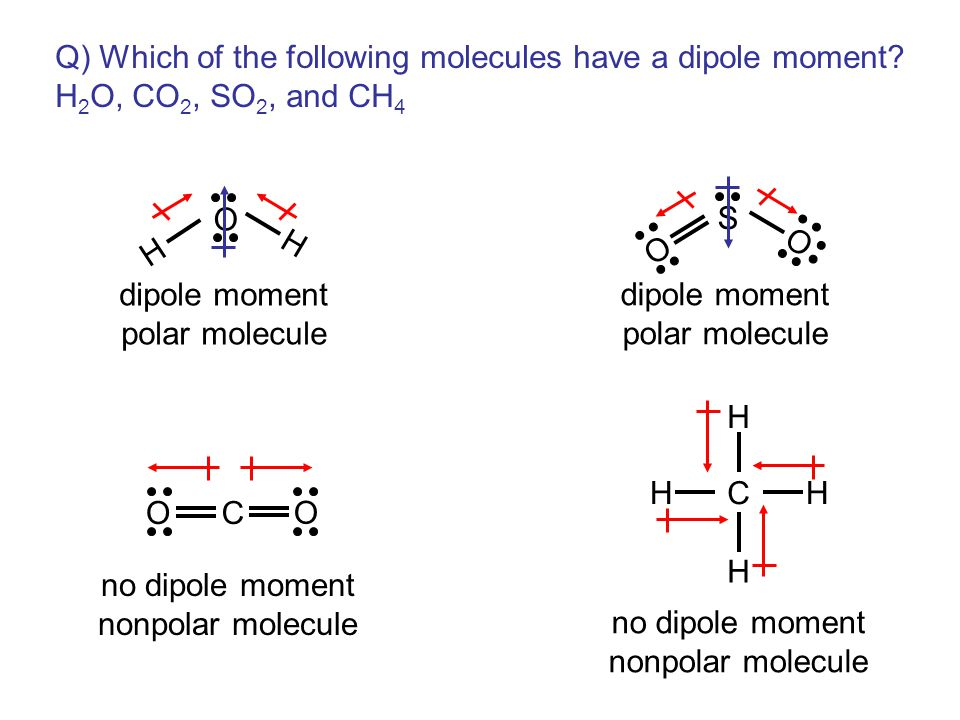 Q) Which of the following molecules have a dipole moment.