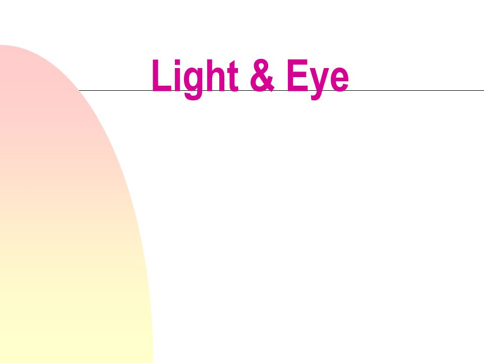 Human eye structures n Cornea - most anterior n Aqueous humor - watery solution behind cornea n Lens - fairly rigid structure n Vitreous Humor- jelly like colloid n Retina -delicate light receiving layer n Sclera - tough protective white outer layer