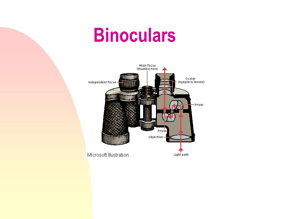 Tools that use lenses / mirrors n Eyeglasses - to correct poor vision n Telescopes- to see things that are far away n Microscope - to see very small t