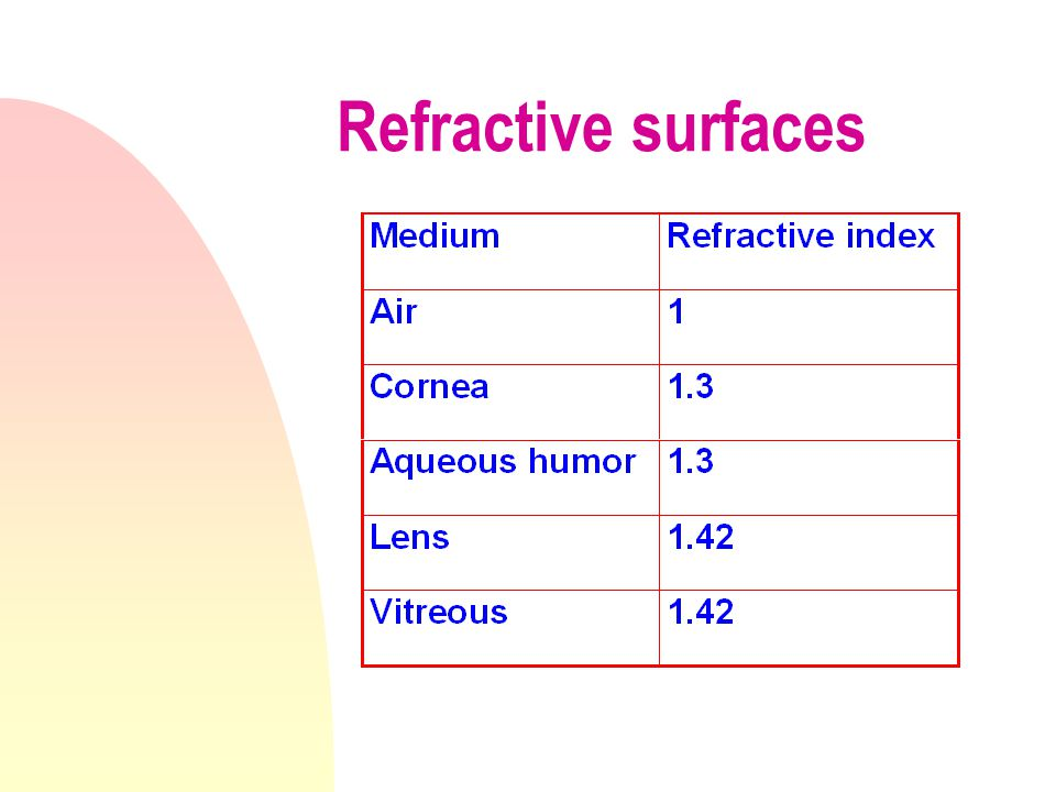 cornea Vitreous Humor Aqueous humor