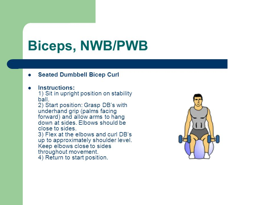 Biceps, NWB/PWB Seated Dumbbell Bicep Curl Instructions: 1) Sit in upright position on stability ball. 2) Start position: Grasp DB's with underhand gr