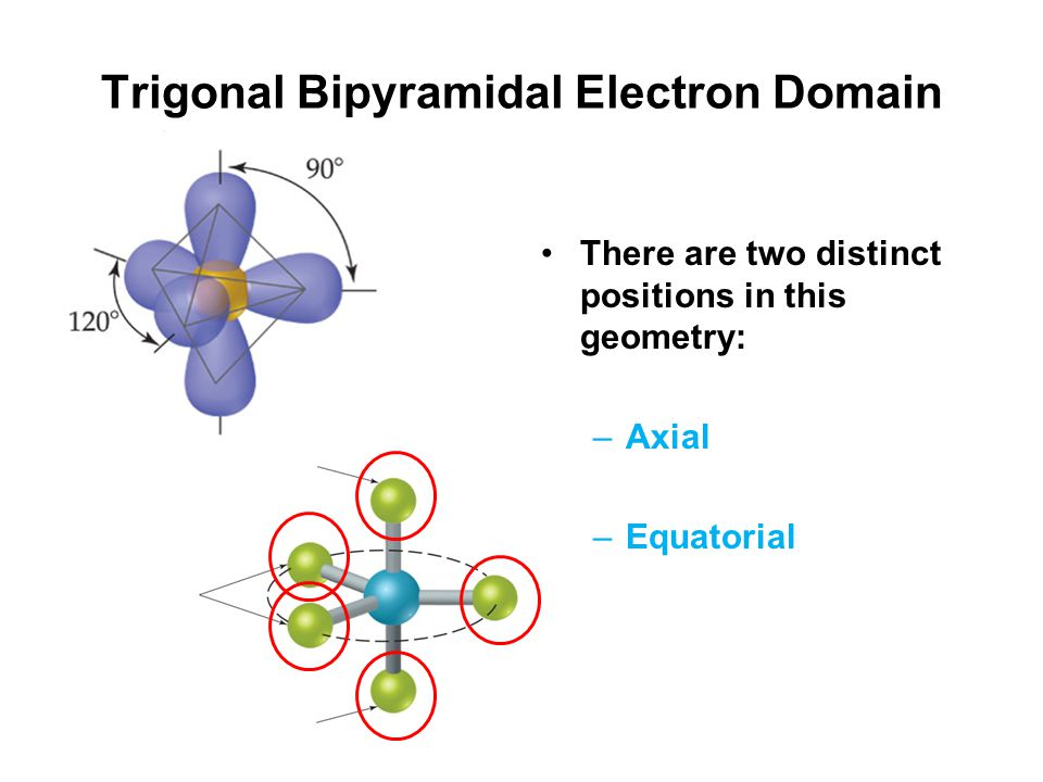 Trigonal Bipyramidal Electron Domain There are two distinct positions in this geometry: –Axial –Equatorial