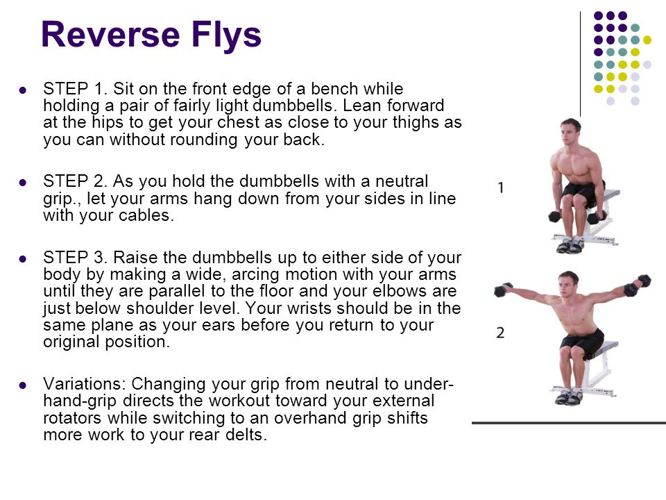 Reverse Flys STEP 1. Sit on the front edge of a bench while holding a pair of fairly light dumbbells. Lean forward at the hips to get your chest as cl