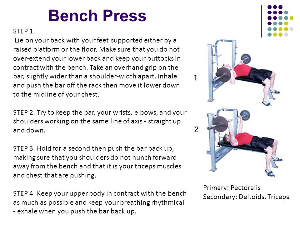 Bench Press STEP 1. Lie on your back with your feet supported either by a raised platform or the floor. Make sure that you do not over-extend your low