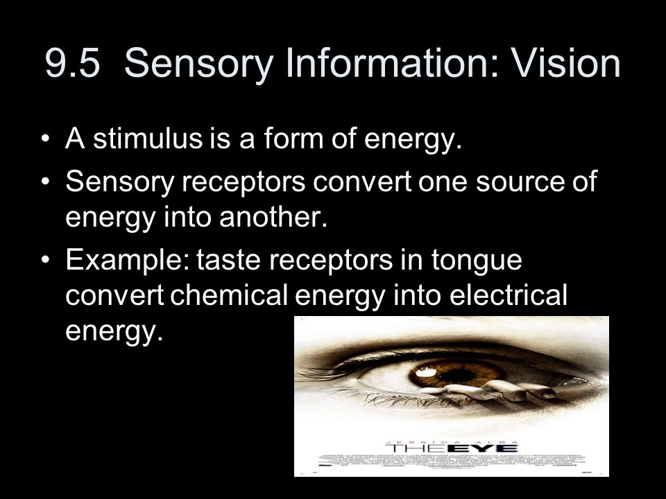 9.5 Sensory Information: Vision A stimulus is a form of energy. Sensory receptors convert one source of energy into another. Example: taste receptors