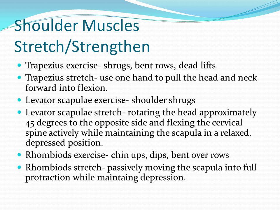 Phase 2: Elbow Muscles Joint- radioulnar joint.Action- elbow extension, supination.