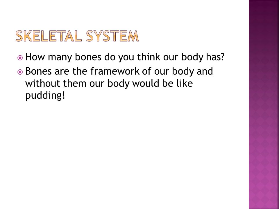  How many bones do you think our body has?  Bones are the framework of our body and without them our body would be like pudding!