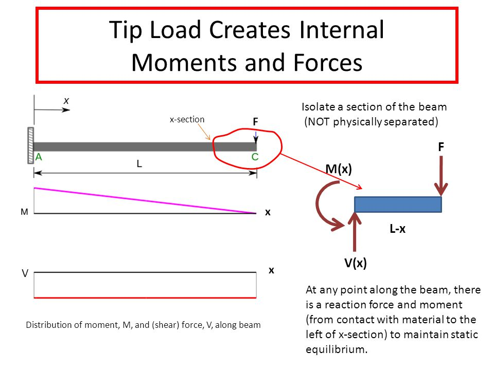 Tip Load Creates Internal Moments and Forces V x x M(x) F V(x) L-x At any point along the beam, there is a reaction force and moment (from contact with material to the left of x-section) to maintain static equilibrium.