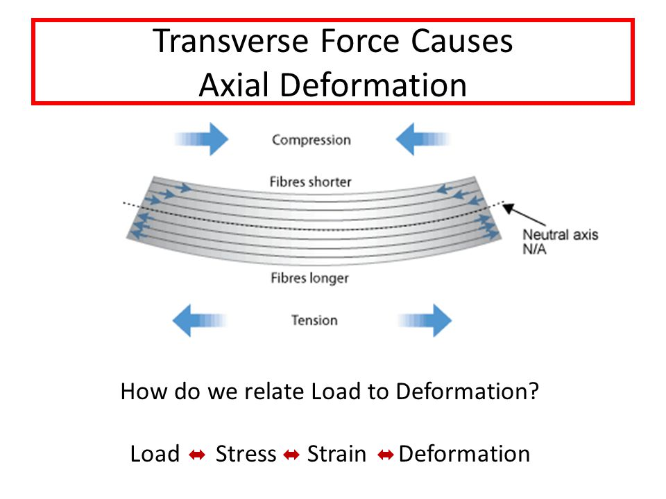 Transverse Force Causes Axial Deformation How do we relate Load to Deformation.