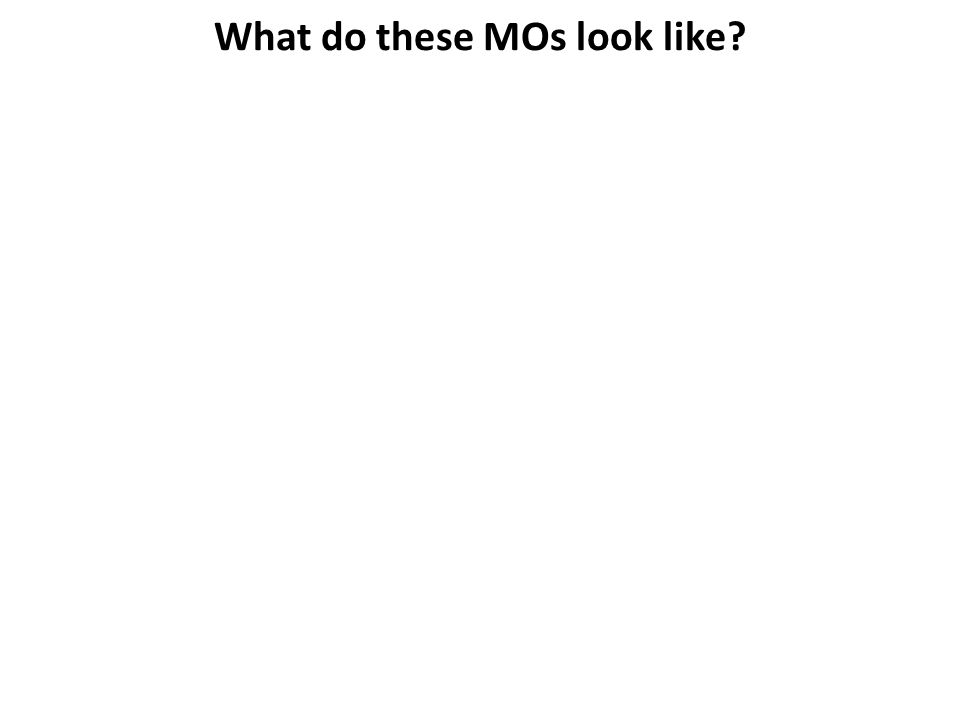 What do these MOs look like?