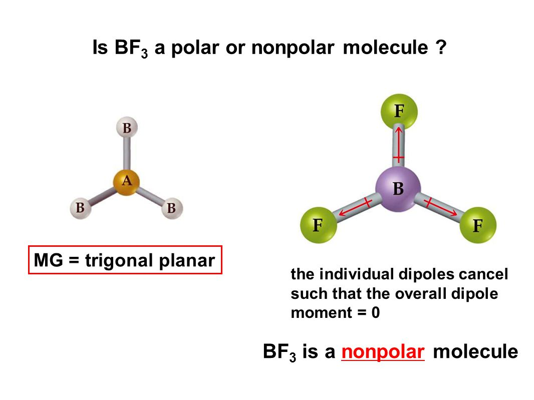 Is BF 3 a polar or nonpolar molecule ? MG = trigonal planar the individual dipoles cancel such that the overall dipole moment = 0 BF 3 is a nonpolar m