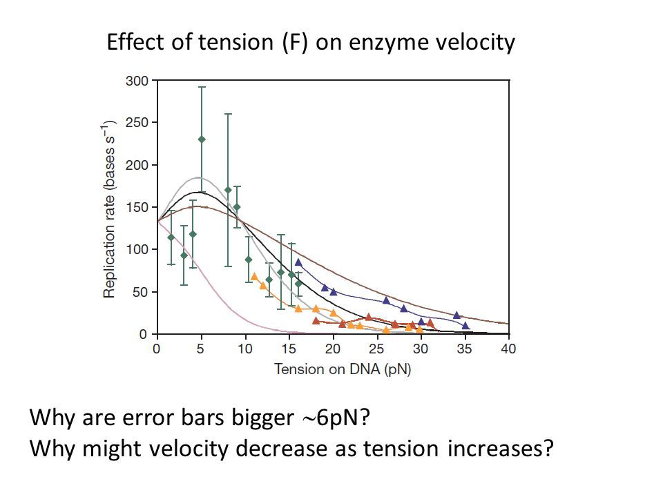 Effect of tension (F) on enzyme velocity Why are error bars bigger  6pN.