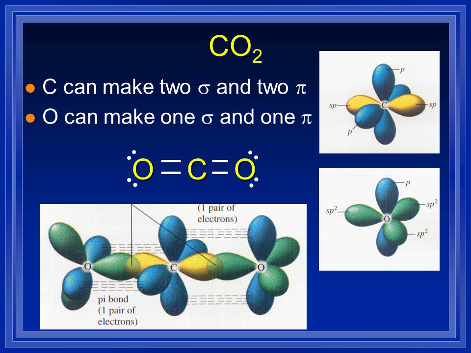 sp hybridization l end up with two lobes 180º apart. l p orbitals are at right angles makes room for two  bonds and two sigma bonds. l a triple bond