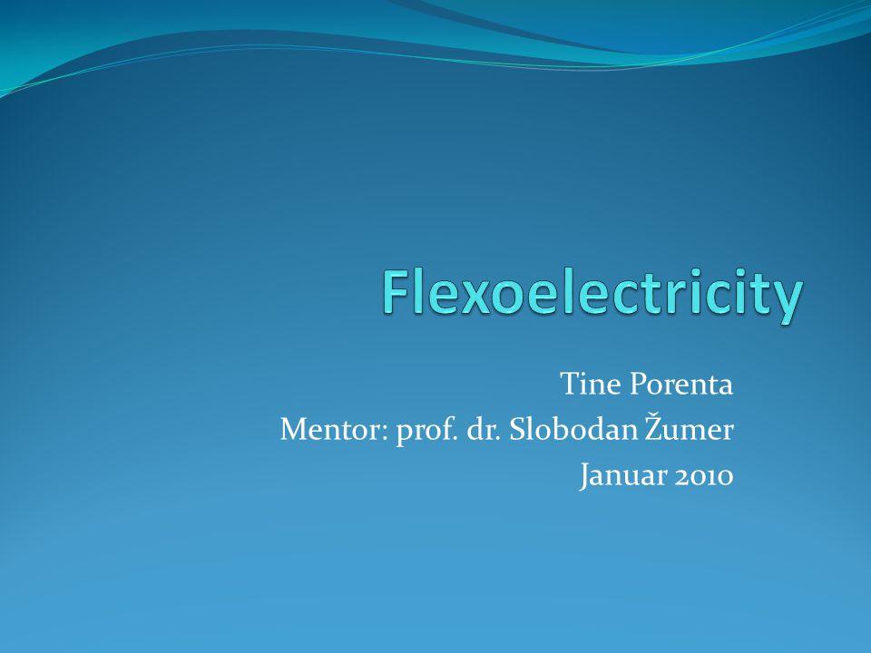 Tine Porenta Mentor: prof. dr. Slobodan Žumer Januar 2010