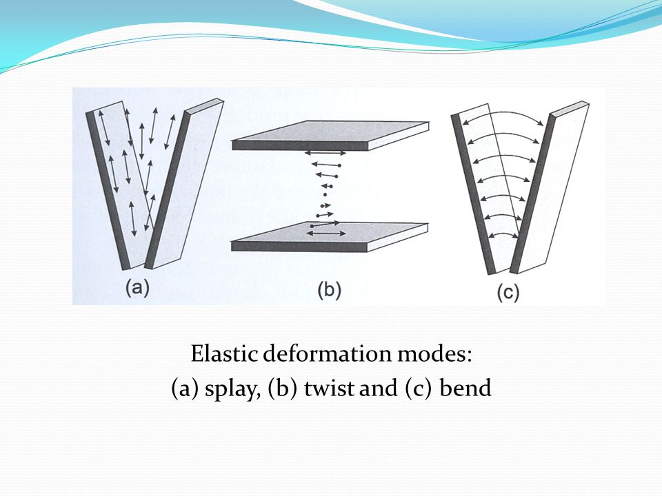 Elastic deformation modes: (a) splay, (b) twist and (c) bend
