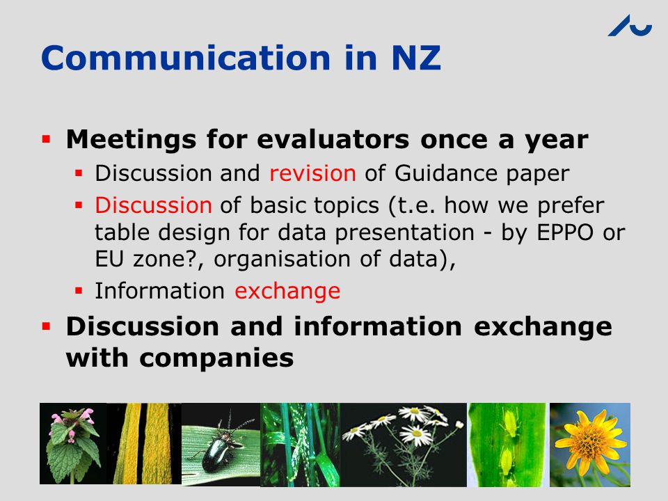 Communication in NZ  Meetings for evaluators once a year  Discussion and revision of Guidance paper  Discussion of basic topics (t.e. how we prefer