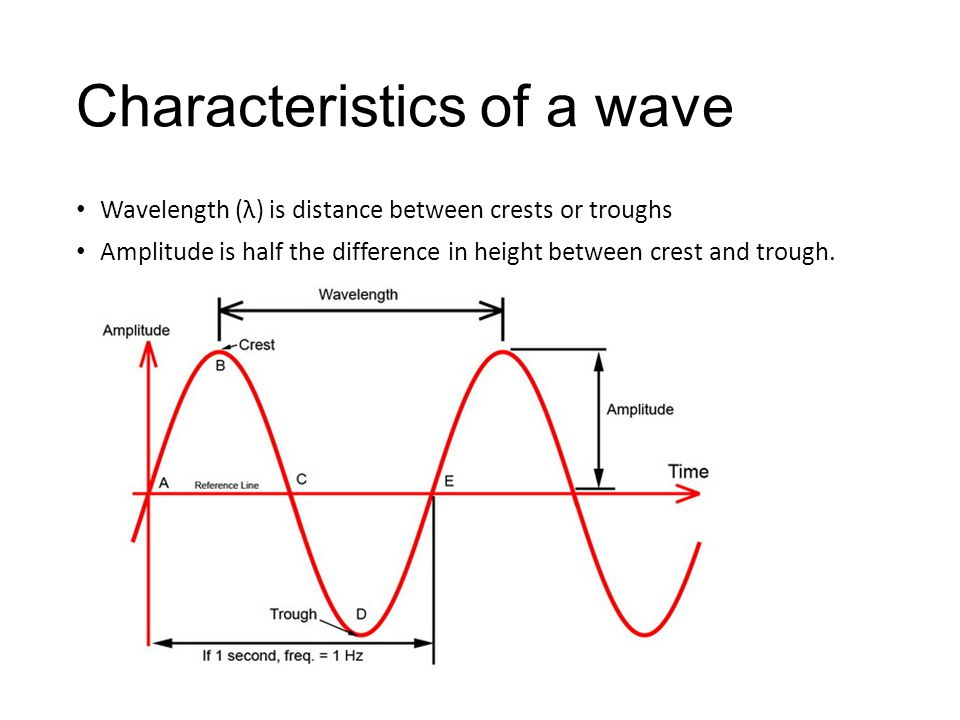 Characteristics of a wave Wavelength (λ) is distance between crests or troughs Amplitude is half the difference in height between crest and trough.