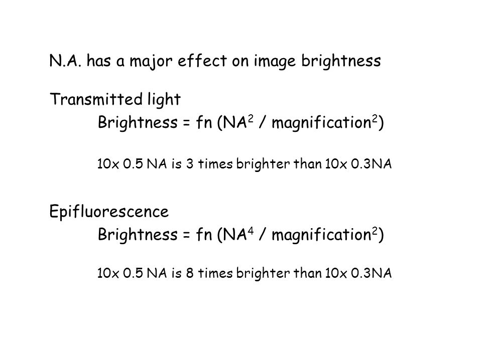 N.A. has a major effect on image brightness Transmitted light Brightness = fn (NA 2 / magnification 2 ) Epifluorescence Brightness = fn (NA 4 / magnif