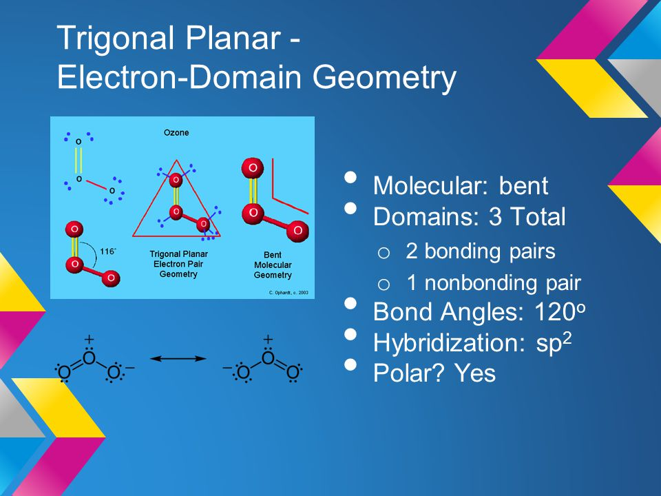 Trigonal Planar - Electron-Domain Geometry Molecular: bent Domains: 3 Total o 2 bonding pairs o 1 nonbonding pair Bond Angles: 120 o Hybridization: sp