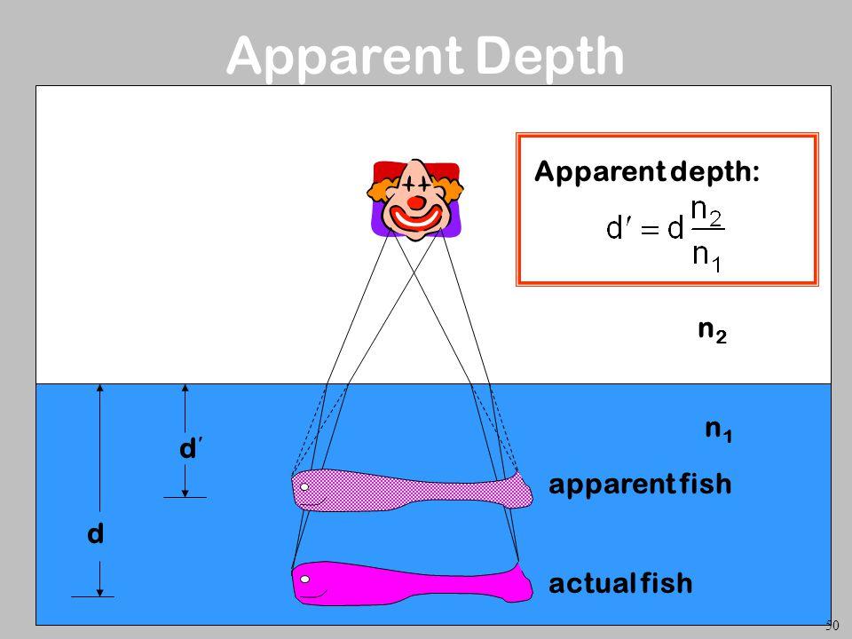 n2n2 n1n1 d d Apparent depth: Apparent Depth 50 actual fish apparent fish