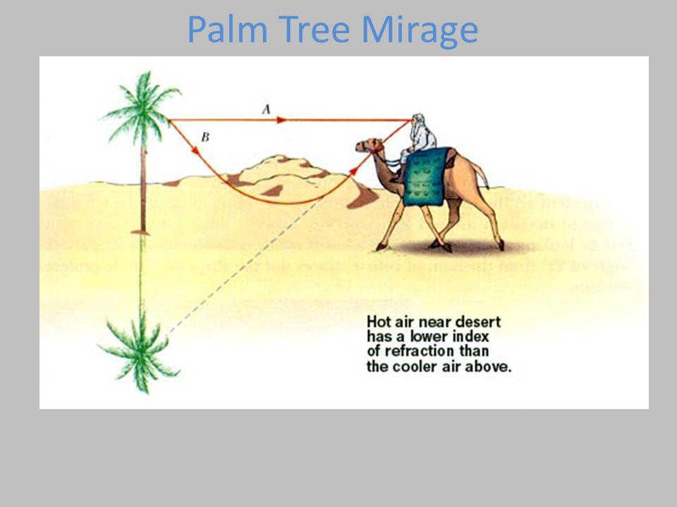 Palm Tree Mirage
