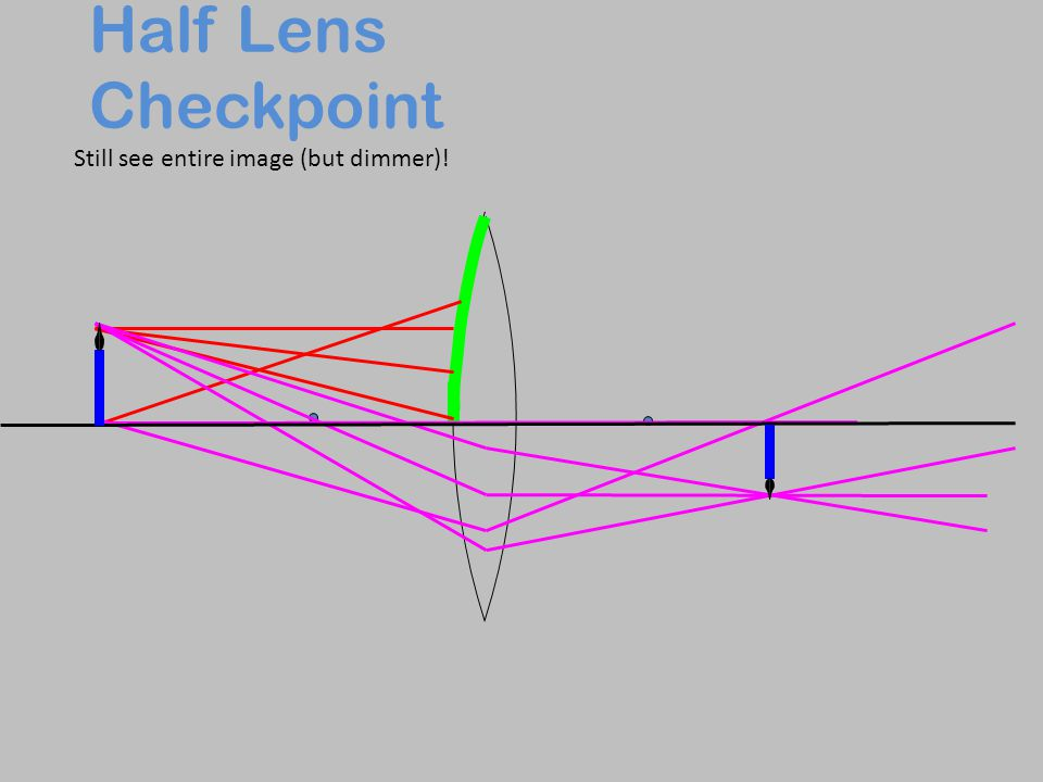 Half Lens Checkpoint Still see entire image (but dimmer)!