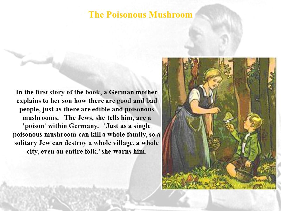 In the first story of the book, a German mother explains to her son how there are good and bad people, just as there are edible and poisonous mushrooms.