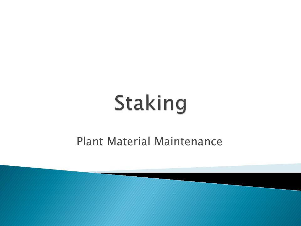 Plant Material Maintenance
