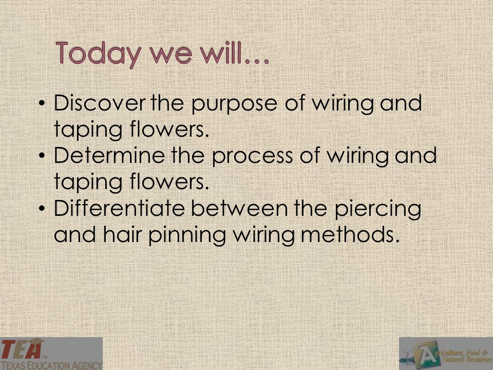 Discover the purpose of wiring and taping flowers.