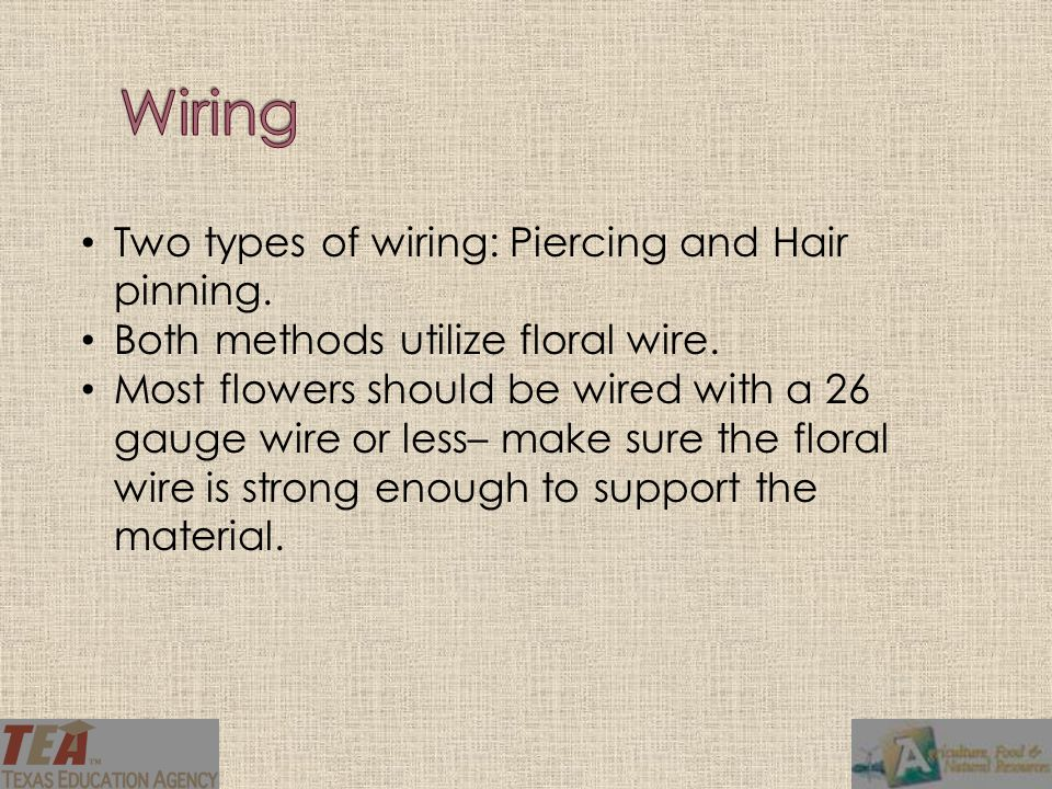 The piercing method is used for single flower heads and broad leaves.