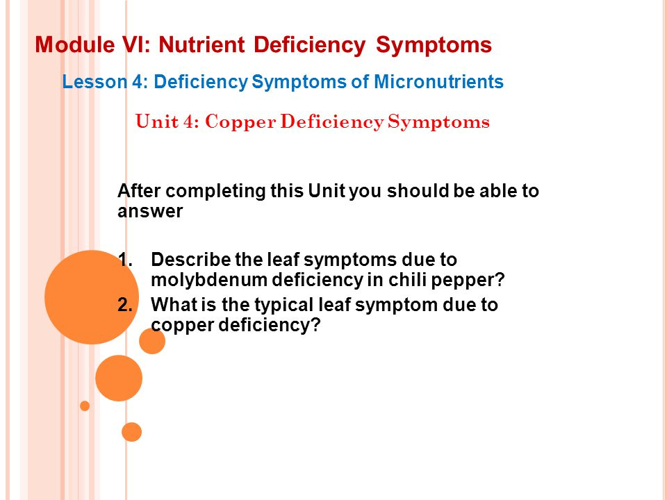 Module VI: Nutrient Deficiency Symptoms Lesson 4: Deficiency Symptoms of Micronutrients Unit 4: Copper Deficiency Symptoms After completing this Unit
