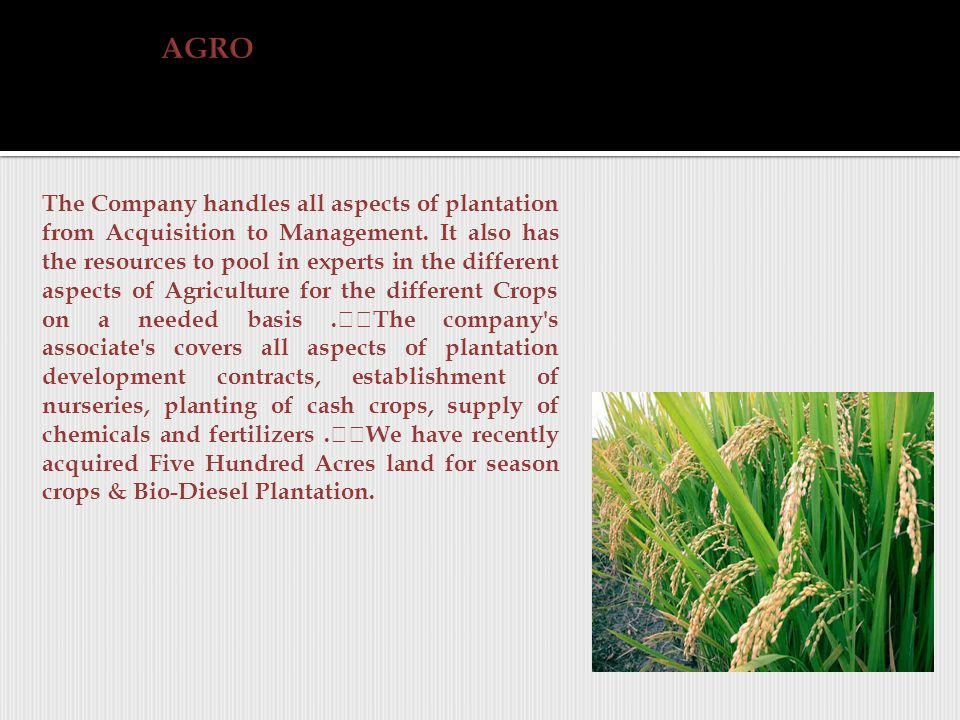 The Company handles all aspects of plantation from Acquisition to Management.