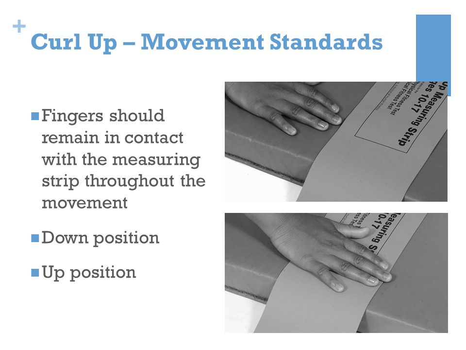 + Curl Up – Movement Standards Fingers should remain in contact with the measuring strip throughout the movement Down position Up position