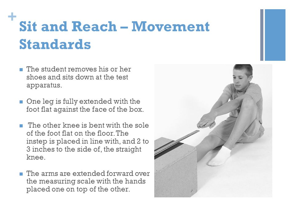 + Sit and Reach – Movement Standards The student removes his or her shoes and sits down at the test apparatus. One leg is fully extended with the foot