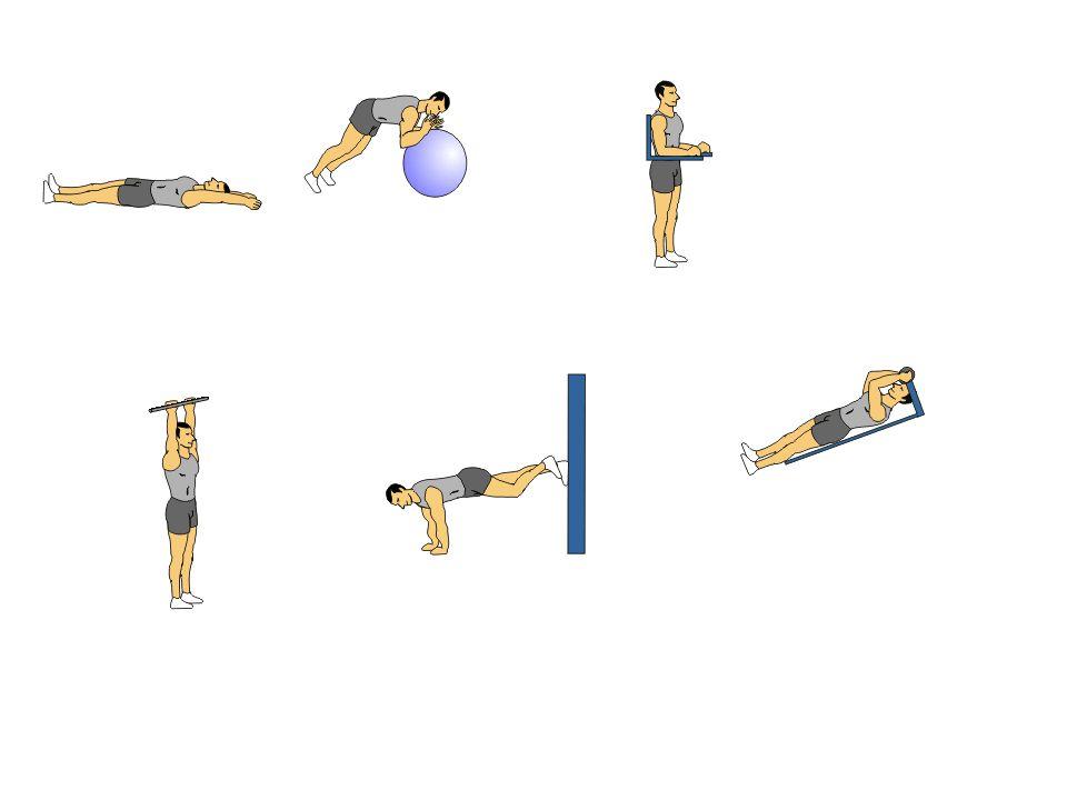 آموزش تصویری حرکات ورزشی برای لاغری شکم رتبه دهی (51 رای)