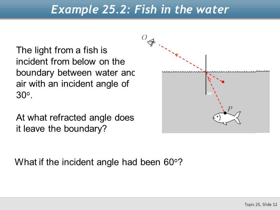 The light from a fish is incident from below on the boundary between water and air with an incident angle of 30 o. At what refracted angle does it lea